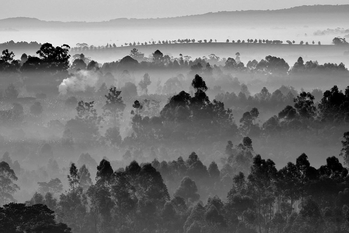 Mlžná Uganda