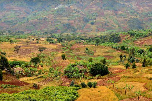Barevná Rwanda