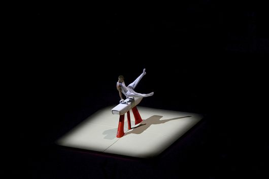 jiri_bosek_gymnast